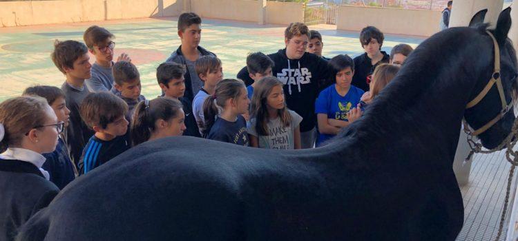Feria del ocio para los alumnos de La Salle Alcoi