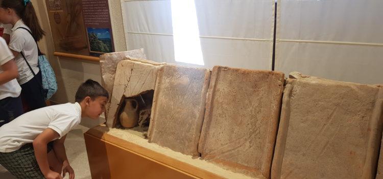 La  Salle Alcoi visita el Museu Arqueològic d'Alcoi