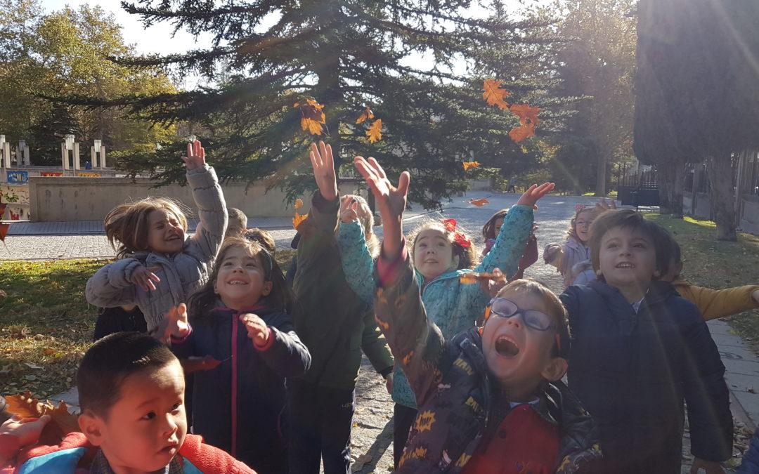 Els alumnes d'Infantil de La Salle Alcoi descobreixen la tardor
